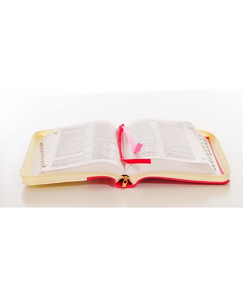 Библия 045 (Индексы, замок) синод. перевод
