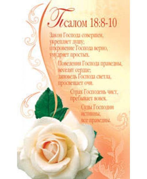Наклейка S11